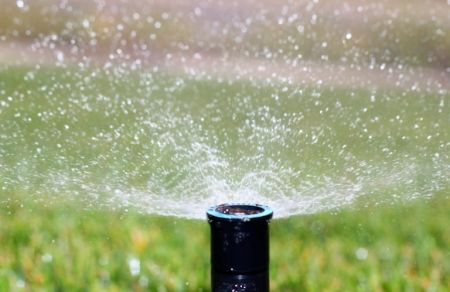 Mitch Wright - 5 Ways to Save Water in the Spring